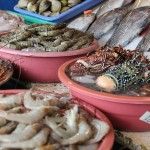 Lots of good seafood in the Philippines