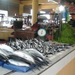 Beautiful clean fish display
