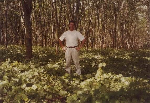 On the Plantation - October 1993